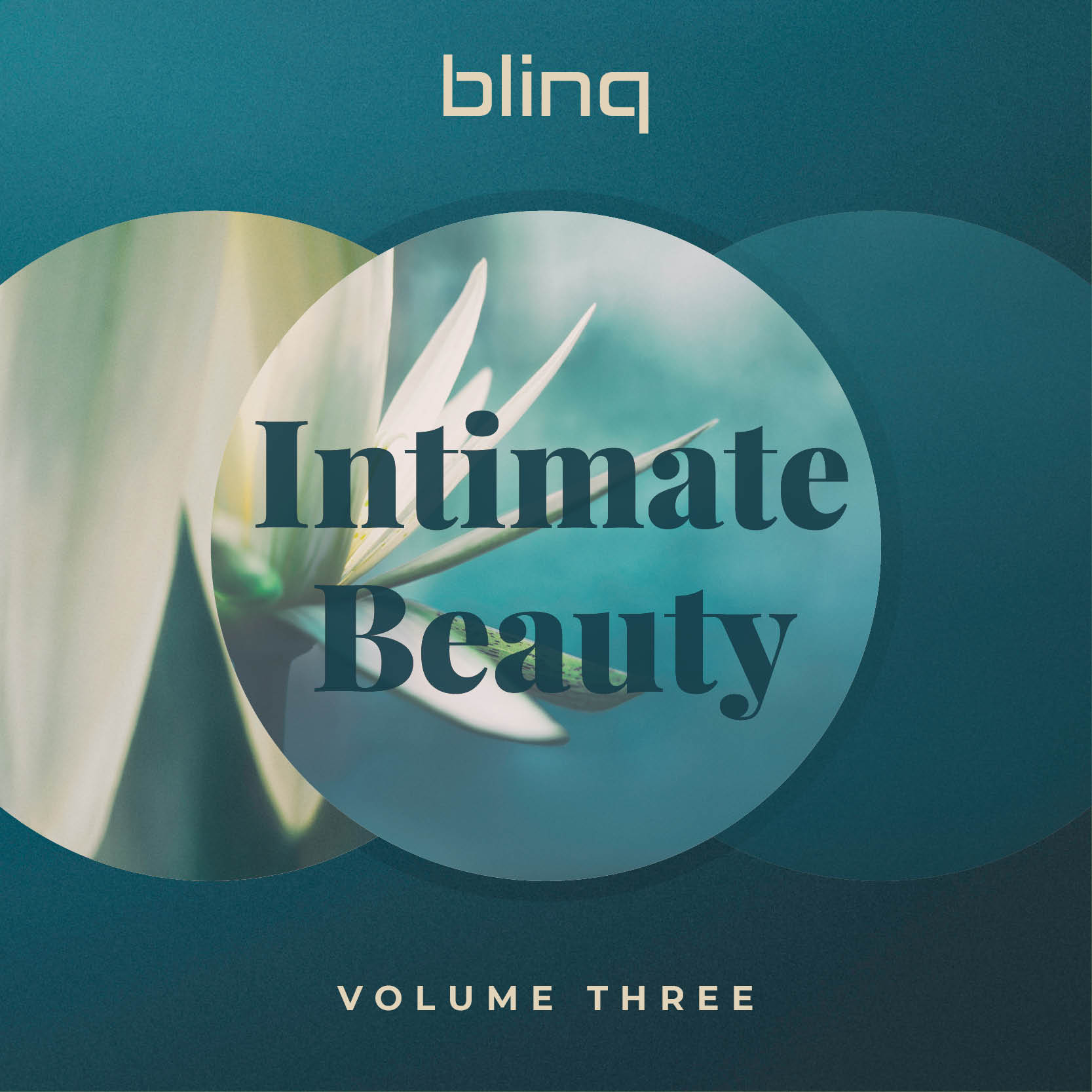 Intimate Beauty vol.3