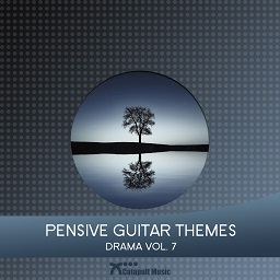 Pensive Guitar Themes