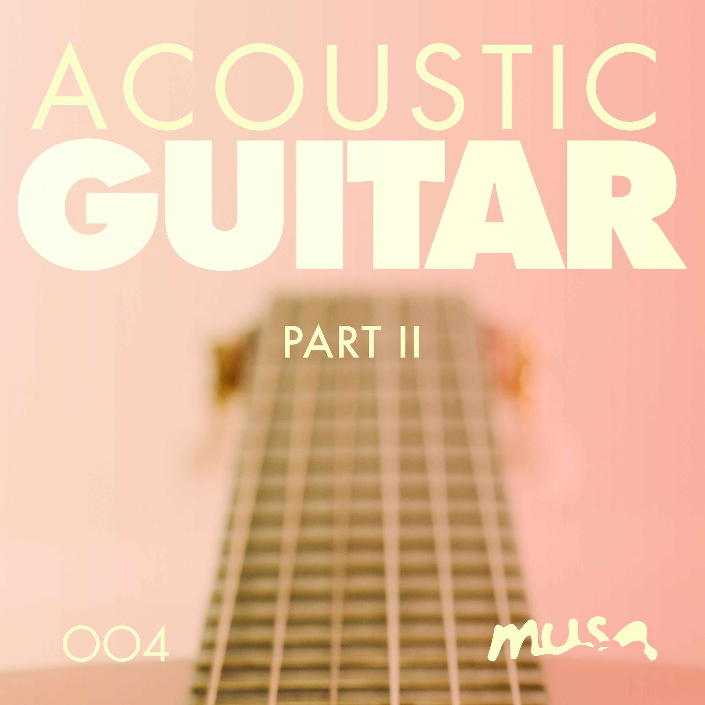 Acoustic Guitar II